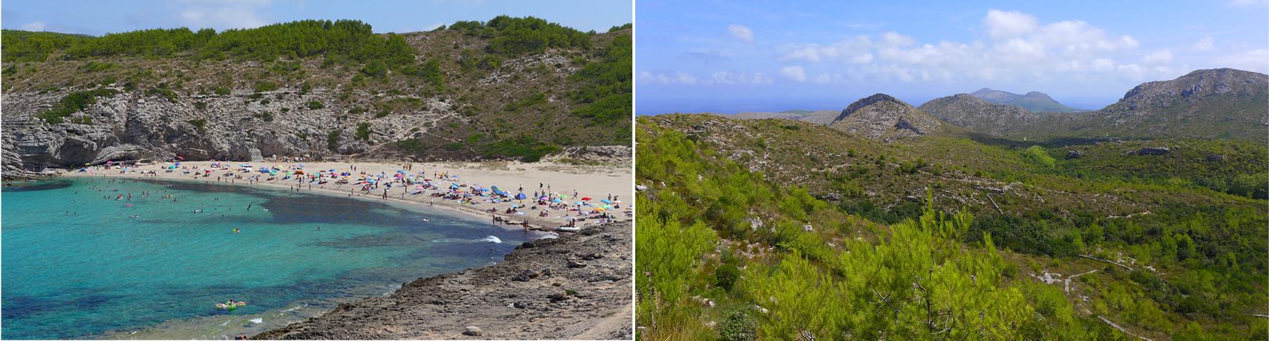 Ibiza Amp Mallorca Travel Honey