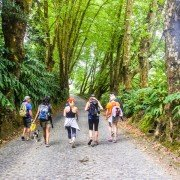 Azores-Finding-the-Best-Hike-Sao-Miguel