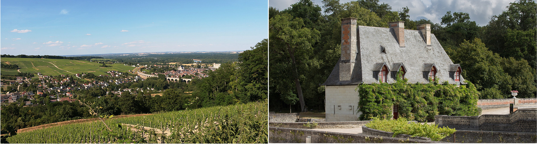 Photo-Loir-Valley-Vineyards