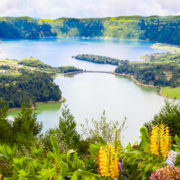 Azores-Layover-Sete-Cidades-Flowers