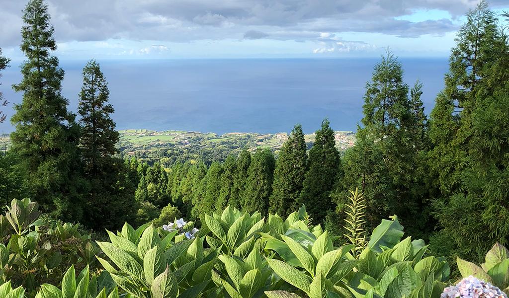 Sao-Miguel-Azores-Ocean-View