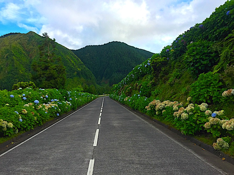 Wild Sao Miguel Island in the Azores