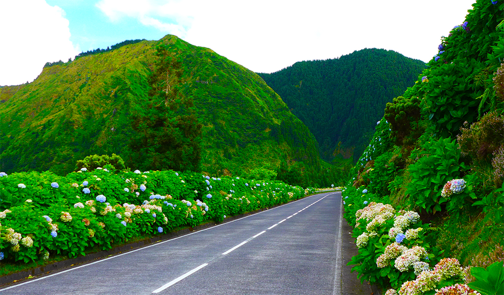 Sao-Miguel-Road-Photo