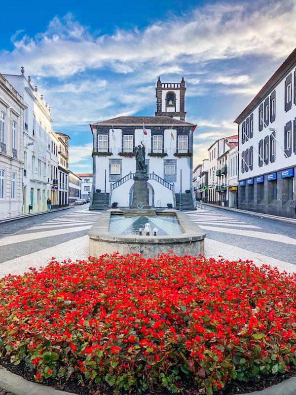 Ponta-Delgada-Sao-Miguel-Azores-Red-Flowers