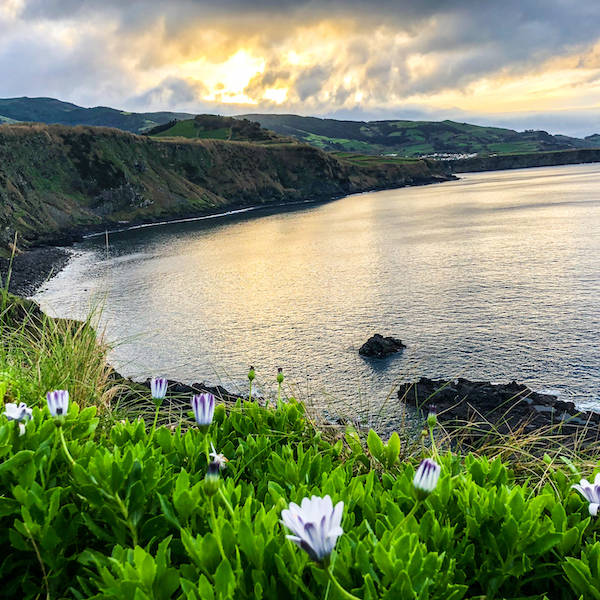 Azores-Sao-Miguel-Maia-Flowers-Sunset