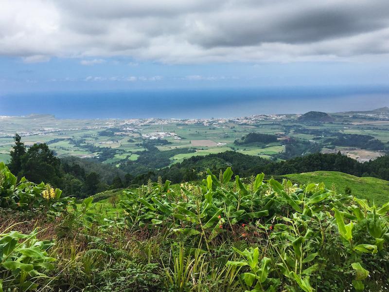 Azores-Sao-Miguel-Vista-Flowers-Green-Ocean\